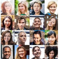 Diversity: Embracing Our Differences - Trainer's Guide